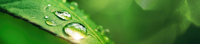 Sustainability - Decarbonization - EPC